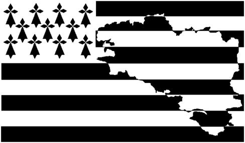 Interventions sur Pontivy et Fougères en Bretagne