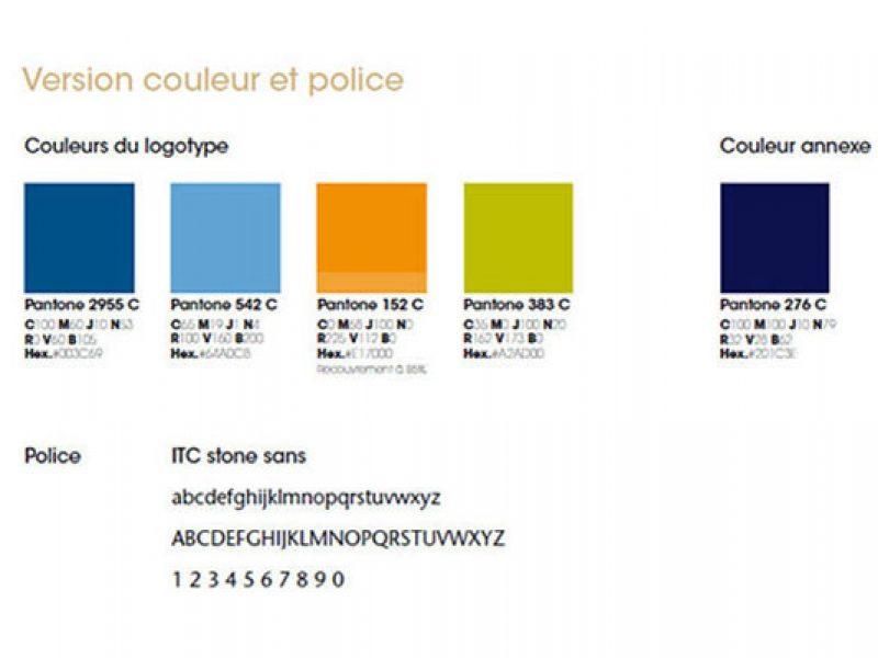 exemple de codes couleurs dans une charte graphique avec pantone cmjn rvb hexadecimal police et typographie