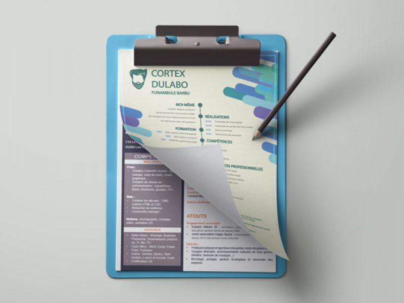 conception graphique de curriculum vitae, documents personnels ou professionnels, mises en page, rédaction, correction, valorisation